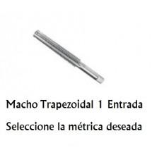 Macho Trapezoidal 1 Entrada M12x3